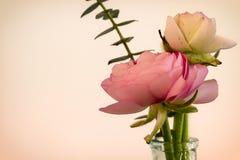 Μπουκέτο λουλουδιών βατραχίων Στοκ Φωτογραφία