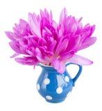 Μπουκέτο λουλουδιών του σαφρανιού λιβαδιών που απομονώνεται στο λευκό Στοκ εικόνα με δικαίωμα ελεύθερης χρήσης