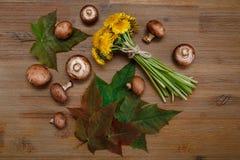 Μπουκέτο λουλουδιών των κίτρινων πικραλίδων, δασικά μανιτάρια, πράσινα φύλλα στον ξύλινο πίνακα Φθινόπωρο Garden& x27 υπόβαθρο το Στοκ Εικόνες
