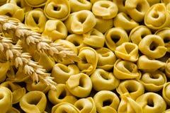 Μπουλέττες Tortellini με το μικτά κρέας και τα λαχανικά, Bolonia Ita Στοκ εικόνες με δικαίωμα ελεύθερης χρήσης