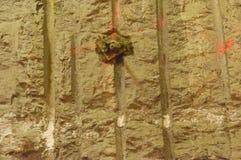 Μπουλόνι αγκύρων βράχου Στοκ Εικόνες