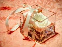 μπουμπούκι τριαντάφυλλο Στοκ εικόνα με δικαίωμα ελεύθερης χρήσης