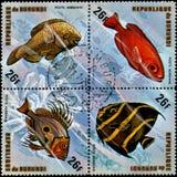 ΜΠΟΥΡΟΥΝΤΙ - CIRCA 1974: τα γραμματόσημα, που τυπώνονται ψάρι στο Μπουρούντι, παρουσιάζουν ένα: Arenatus Priacanthus, arcuatus Po Στοκ Φωτογραφία