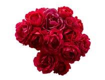Μπους των κόκκινων ροδαλών λουλουδιών που απομονώνεται Στοκ φωτογραφία με δικαίωμα ελεύθερης χρήσης