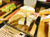 Μπουφές τυριών ποικιλίας του ξενοδοχείου Στοκ φωτογραφία με δικαίωμα ελεύθερης χρήσης