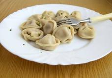 μπουλεττών γεύματος ρωσική σαλάτα pelmeni κρέατος εθνική στοκ φωτογραφίες