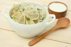 μπουλεττών γεύματος ρωσική σαλάτα pelmeni κρέατος εθνική στοκ φωτογραφία