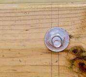 Μπουλόνι στη σανίδα Στοκ Φωτογραφία