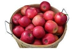 μπούσελ μήλων στοκ φωτογραφία με δικαίωμα ελεύθερης χρήσης