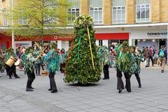Μπρίστολ Jack στο πράσινο στοκ φωτογραφία