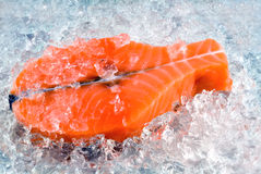 μπριζόλα σολομών Στοκ εικόνες με δικαίωμα ελεύθερης χρήσης