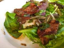 Μπριζόλα με τη σαλάτα στοκ φωτογραφία