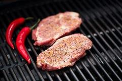 Μπριζόλα χοιρινού κρέατος bbq στη σχάρα καμία φλόγα Στοκ Φωτογραφίες