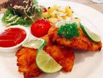 μπριζόλα ψαριών Στοκ εικόνες με δικαίωμα ελεύθερης χρήσης