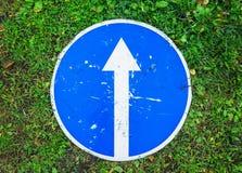 Μπροστά μόνο, το μπλε οδικό σημάδι βάζει στη χλόη Στοκ φωτογραφία με δικαίωμα ελεύθερης χρήσης