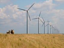 μπροστινά windturbines προβάτων Στοκ Φωτογραφίες
