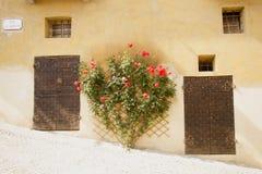 Μπροστινές πόρτες και λουλούδια Στοκ Φωτογραφία