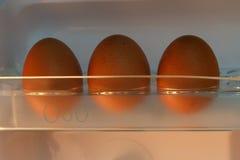 Μπροστινή άποψη δίσκων αυγών Στοκ εικόνες με δικαίωμα ελεύθερης χρήσης