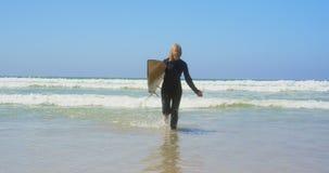 Μπροστινή άποψη του δραστήριου ανώτερου καυκάσιου θηλυκού surfer που τρέχει στη θάλασσα στην ηλιοφάνεια 4k φιλμ μικρού μήκους