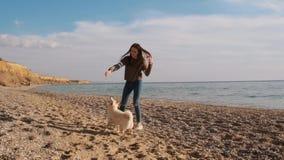 Μπροστινή άποψη του παιχνιδιού κοριτσιών εφήβων με το ραβδί με το δραστήριο άσπρο κουτάβι inu shiba της στην παραλία σε αργή κίνη φιλμ μικρού μήκους