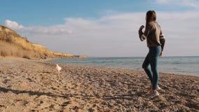 Μπροστινή άποψη του παιχνιδιού κοριτσιών εφήβων με το ραβδί με το δραστήριο άσπρο κουτάβι inu shiba της στην παραλία σε αργή κίνη απόθεμα βίντεο