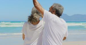 Μπροστινή άποψη του ρομαντικού ενεργού ανώτερου ζεύγους αφροαμερικάνων που χορεύει μαζί στην παραλία 4k απόθεμα βίντεο