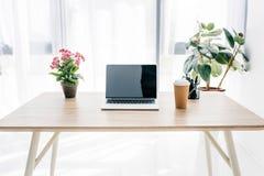 μπροστινή άποψη του lap-top με την κενή οθόνη, το φλυτζάνι καφέ, τα λουλούδια και τα χαρτικά στοκ εικόνες