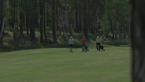 Μπροστινή άποψη των νέων παικτών γκολφ που περπατούν στο γήπεδο του γκολφ το φθινόπωρο χρωματίζει τα δέντρα άμμου γκολφ σημαιών π απόθεμα βίντεο
