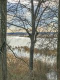 Μπροστινή ιδιοκτησία ποταμών Στοκ Εικόνες