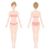 Μπροστινή και πίσω άποψη του μόνιμου θηλυκού σώματος Στοκ Φωτογραφίες