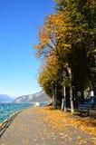 Μπροστινή λίμνη φθινοπώρου με τα κίτρινα φύλλα στο έδαφος, λίμνη Como το φθινόπωρο, Ιταλία Στοκ Φωτογραφίες