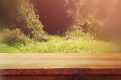 Μπροστινοί αγροτικοί ξύλινοι πίνακες και αφηρημένο δασικό υπόβαθρο που φιλτράρεται τρύγος και που τονίζεται Στοκ εικόνες με δικαίωμα ελεύθερης χρήσης