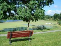 μπροστινό δάσος λιμνών φύση&sigm Στοκ Φωτογραφίες