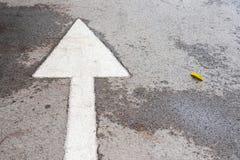 Μπροστινό σημάδι βελών στο στρωμένο δρόμο, βέλος στο δρόμο που δείχνει dir Στοκ φωτογραφίες με δικαίωμα ελεύθερης χρήσης