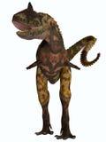 Μπροστινό σχεδιάγραμμα Carnotaurus Στοκ Εικόνες