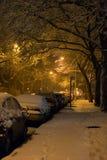 Μπρούκλιν κάτω από το χιόνι Στοκ εικόνες με δικαίωμα ελεύθερης χρήσης