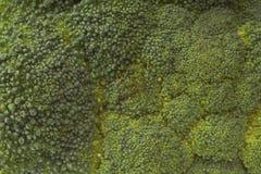 μπρόκολο Στοκ φωτογραφία με δικαίωμα ελεύθερης χρήσης