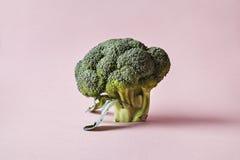 Μπρόκολο που απομονώνεται στο ρόδινο υπόβαθρο Σύγχρονο ύφος των λαχανικών, hipster στοιχεία σχεδίου Στοκ φωτογραφία με δικαίωμα ελεύθερης χρήσης