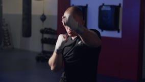Μπόξερ ατόμων που εκπαιδεύει ρίχνοντας τις διατρήσεις στη κάμερα στη  απόθεμα βίντεο