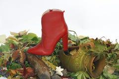 Μπότες δέρματος γυναικών που τίθενται σε ένα κολόβωμα Στοκ εικόνες με δικαίωμα ελεύθερης χρήσης
