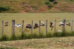 μπότες μόνες Στοκ εικόνες με δικαίωμα ελεύθερης χρήσης