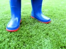 μπότες Ουέλλινγκτον Στοκ εικόνα με δικαίωμα ελεύθερης χρήσης