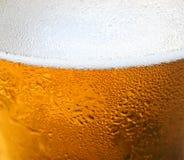 μπύρα ανασκόπησης Στοκ φωτογραφία με δικαίωμα ελεύθερης χρήσης