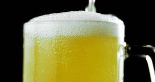 Μπύρα που χύνεται στην κούπα μπύρας στο μαύρο κλίμα 4k απόθεμα βίντεο