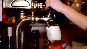 Μπύρα στο μπαρ απόθεμα βίντεο