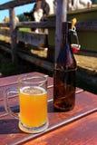 Μπύρα στο όρος με τις αγελάδες Στοκ Φωτογραφίες