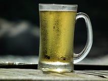 Μπύρα σχεδίων Στοκ Εικόνες