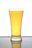 Μπύρα. Στοκ Εικόνες