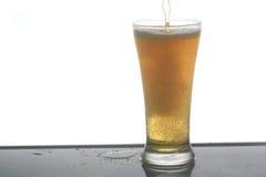 Μπύρα. Στοκ Φωτογραφία