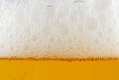 μπύρα Στοκ Φωτογραφία